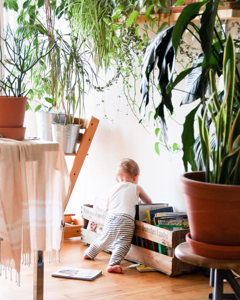 Amazon Baby Registry online gifts - Baby Gear Essentials